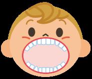 2歳ごろ幼児の歯