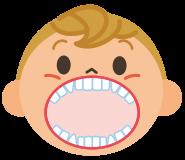 2歳半ごろ幼児の歯